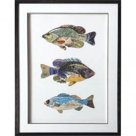 Cuadro marinero de 3 peces collage en el mercader del mar para decoración náutica y marinera