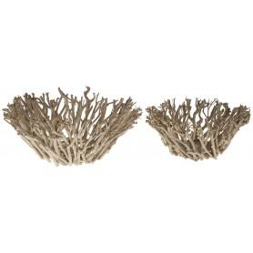 Cuenco náutico del árbol del té para decoración marinera.