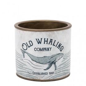 Macetero lata ballena decorativa