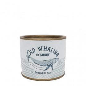 Lata maceta Old Whaling Company